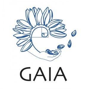 GAIA Formation