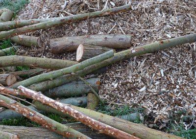 rondins, bois déchiqueté, les produits phares de la trogne champêtre ©DM